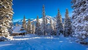 在一个冬天山的老木村庄 免版税库存图片