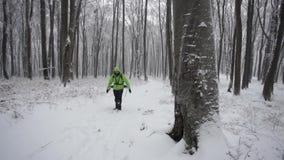在一个冬日期间,男性远足者在森林里 股票视频