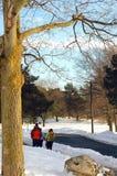 在一个冬日 免版税库存图片