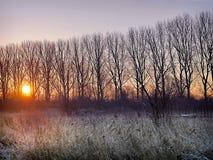 在一个冷淡的河岸的日出 免版税库存图片