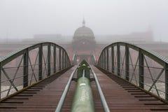 在一个冷的有雾的冬日期间,汉堡历史的鱼市  免版税图库摄影