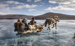 在一个冻湖Khovsgol Nuur的爬犁乘驾 免版税库存照片