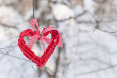 在一个分支的心脏在森林里 库存图片
