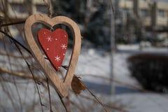 在一个分支的时髦的木心脏特写镜头在冬天 库存图片