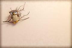 在一个分支的被编织的猫头鹰在米黄背景 库存照片