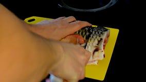 在一个切板的生鱼片鲤鱼 股票录像