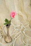 在一个古色古香的银色花瓶的桃红色玫瑰有珍珠的 库存照片