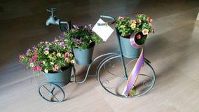 在一个古铜色自行车站立在一个大理石地板上的立场与礼物丝带和卡片的三张五颜六色的开花的花盆 免版税库存照片