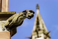 在一个哥特式大教堂的面貌古怪的人,一个塔的细节在蓝天ba的 免版税库存照片