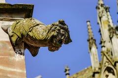 在一个哥特式大教堂的面貌古怪的人,一个塔的细节在蓝天ba的 库存照片