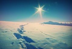 在一个喀尔巴阡山脉谷的美好的冬天 葡萄酒 免版税图库摄影