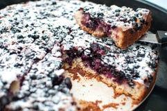 在一个圆的烘烤盘子的被切的搽粉的黑醋栗馅饼 免版税库存图片