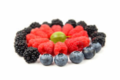 在一个圈子的不同的莓果在白色背景 免版税库存图片