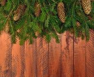在一个土气样式的新年背景 圣诞节t的分支 免版税库存图片