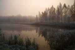 在一个土气池塘的有雾的10月黎明 Petrovsky,普希金山 俄国 免版税图库摄影