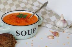 在一个土气碗的扁豆奶油色汤有黑面包片断的  免版税图库摄影