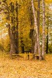 在一个土气秋天公园制表和两条长凳 库存图片