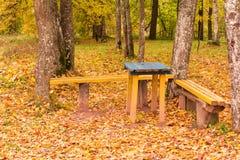 在一个土气秋天公园制表和两条长凳 免版税库存图片
