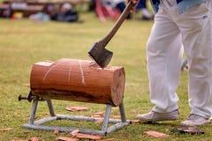 在一个地方国家展示的木砍的事件 库存图片