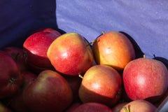 在一个地方每周市场上的新鲜水果在南德国 库存照片