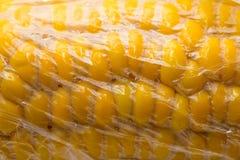 在一个塑料袋的玉米 宏指令 图库摄影