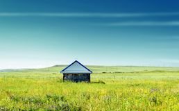 在一个夏天领域的原木小屋本质上 库存图片