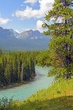 在一个夏日的山河 免版税图库摄影