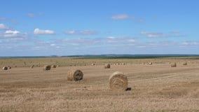 在一个多小山农村领域附近的运动在与大包的夏天干草,慢动作4K 影视素材