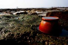 在一个多岩石的海滩的一个泥罐 库存图片