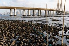在一个多岩石的海滩的大鱼陷井 库存图片