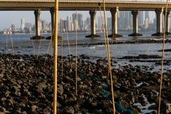 在一个多岩石的海滩的大鱼陷井 免版税库存图片