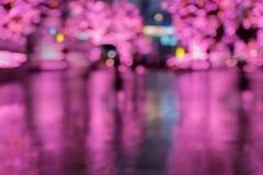 在一个多雨城市场面外面的焦点图片在晚上 免版税库存照片