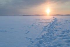 在一个多雪的湖的道路 免版税库存照片