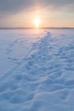 在一个多雪的湖的道路 库存图片