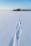 在一个多雪的湖的道路 免版税库存图片
