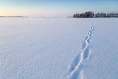 在一个多雪的湖的道路 免版税图库摄影
