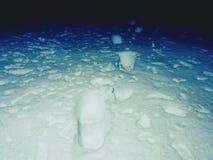 在一个多雪的草甸的脚印 前灯的微弱的光做长的阴影 冻茎 图库摄影