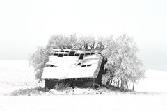 在一个多雪的领域的一间客舱 图库摄影