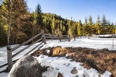 在一个多雪的领域的木篱芭 免版税库存图片