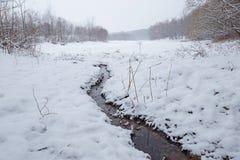 在一个多雪的风景的冬天小河在森林里 免版税图库摄影