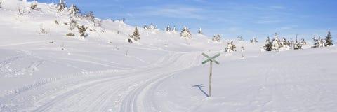 在一个多雪的风景的横越全国的足迹在特吕西尔,挪威 图库摄影