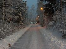 在一个多雪的风景的道路 免版税库存图片