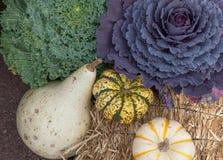 在一个大包的五颜六色的秋天收获干草 免版税库存图片