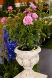 在一个大理石花瓶的玫瑰 免版税库存照片