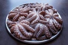 在一个大盛肉盘的新鲜的未加工的章鱼 概念-健康食物, lo 库存照片