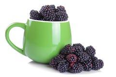 在一个大绿色杯子的新鲜的黑莓在白色背景 查出 免版税库存图片