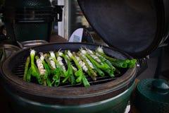 在一个大绿色鸡蛋的菜烹调演播室的 免版税库存照片
