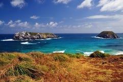 在一个大风天的岩石海岸 免版税库存照片