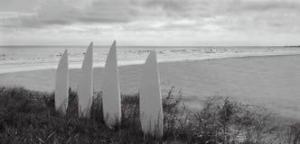 在一个孤零零海滩的冲浪板 图库摄影