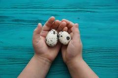 在一个孩子的棕榈的两个鸡蛋木背景的 免版税图库摄影